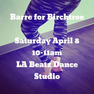 Barre for Birchtree @ LA BEATZ Dance Studio