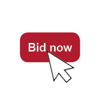 Online Auction Bidding @ charityauction.bid/ birchtreeauction